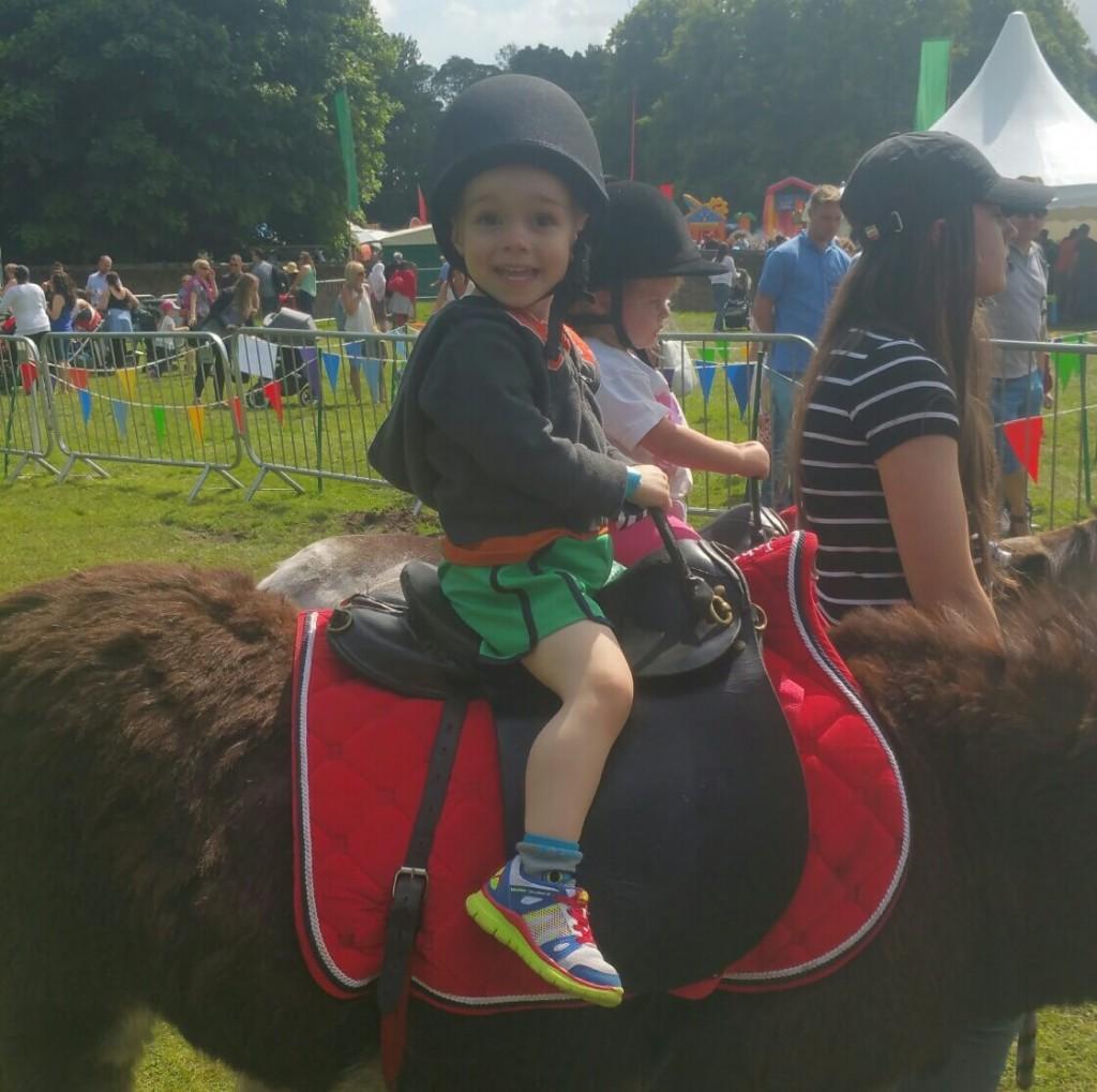 donkeyride