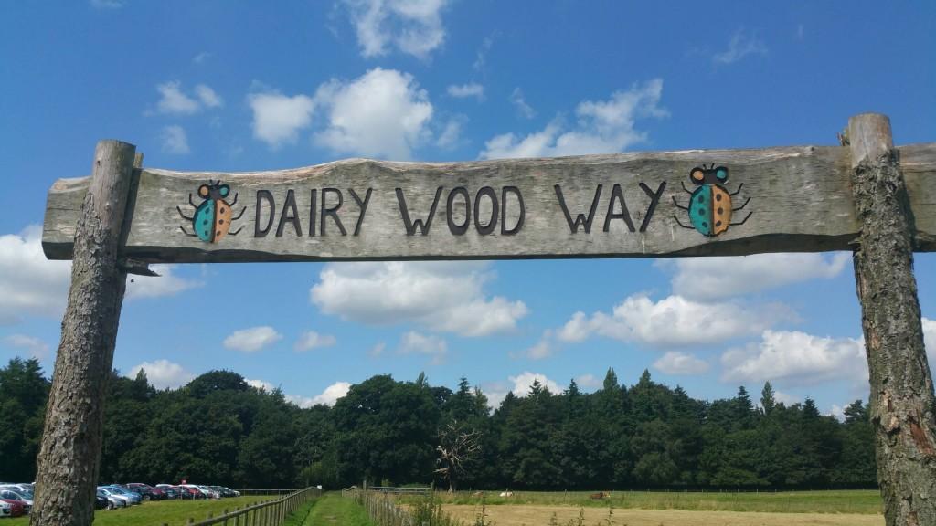 dairy wood