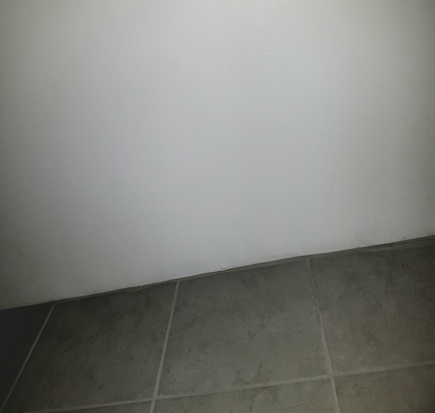 banishing bathroom mould