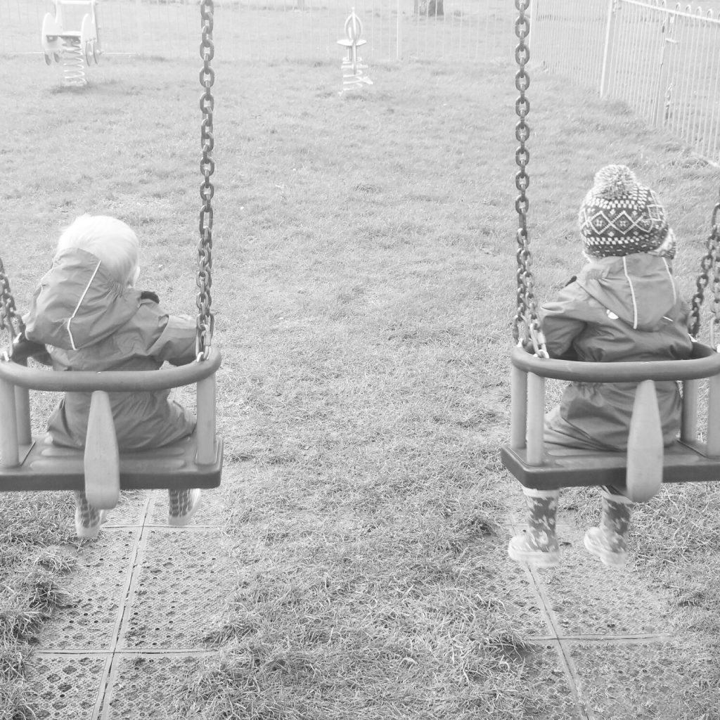 Flintshire parks