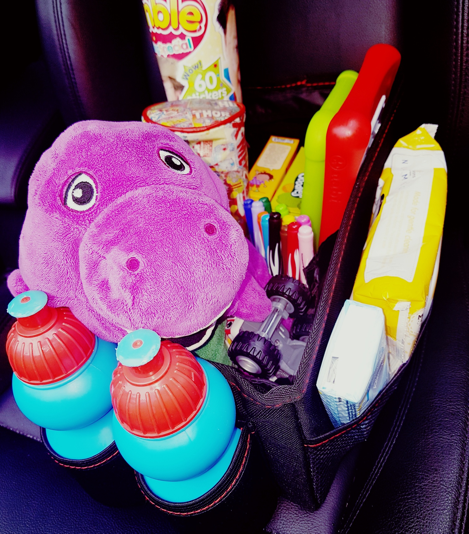 travel tidy for the car
