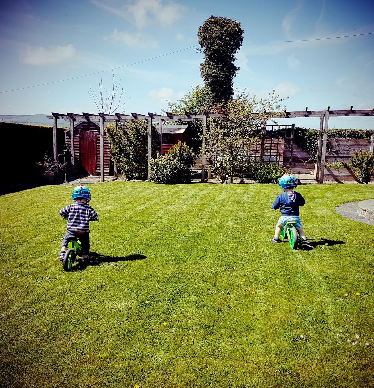 choosing a balance bike