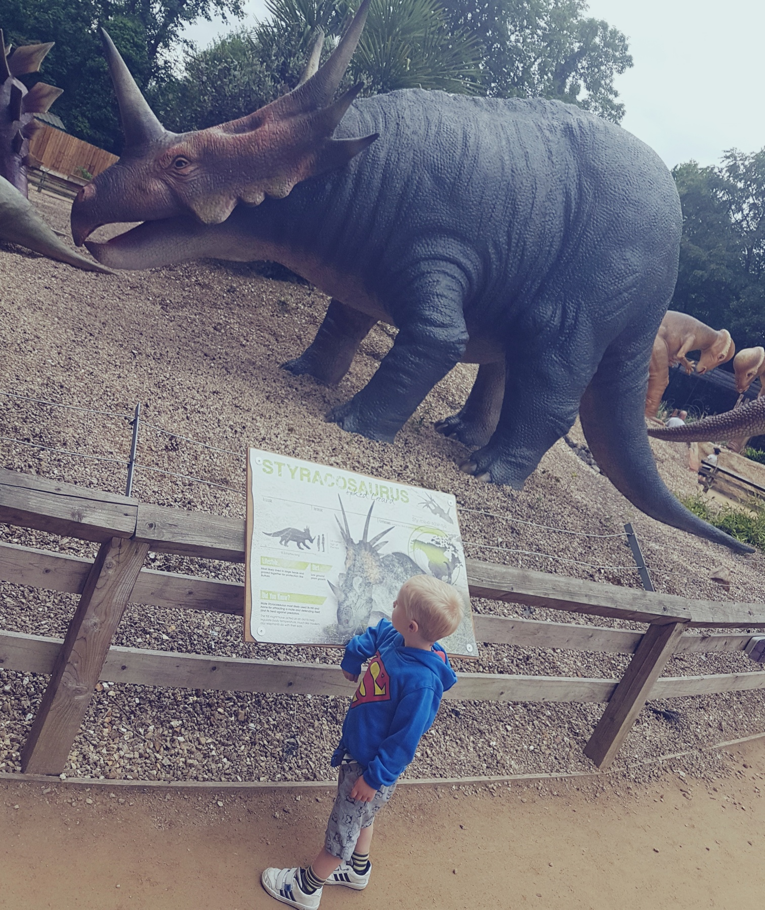 drayton manor dino trail