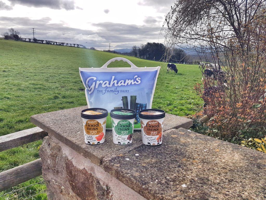 New Graham's High Protein dairy Ice Cream