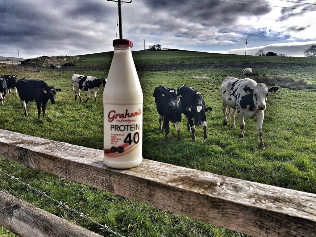 Graham's High Protein Milk
