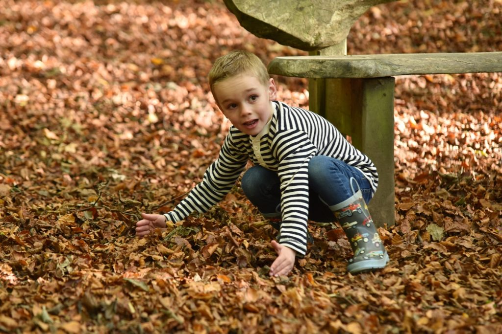 boy playing outside with leaves