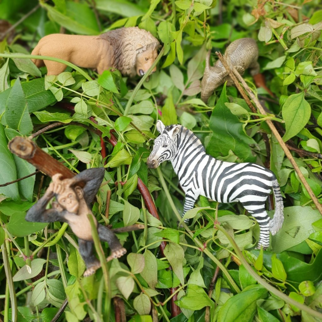 Wildlife Starter Set